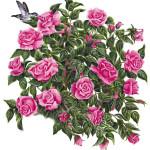 RoseTree